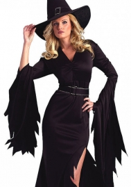 Halloween/Christmas Witch Costume