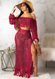 Women's fashion net sexy two piece set